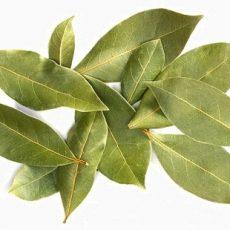 bay-leaves